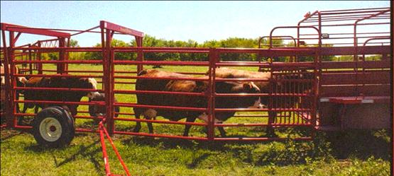 Diamond W Portable Cattle Corral