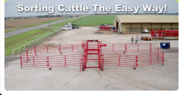 Diamond W Sorting System for Cattle and Bison
