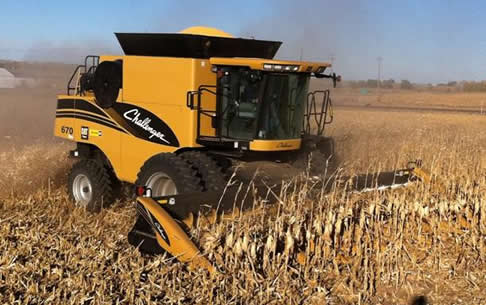 Custom Combining Corn & Wheat in Colorado
