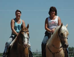 Donna Ackerman Training, Breeding, &  Boarding Center, Northern Colorado