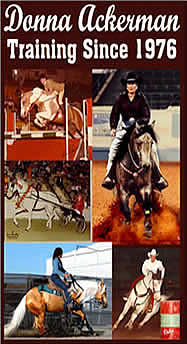 Training & Lessons, Greeley, Colorado, Horses,  Donna Ackerman Colorado