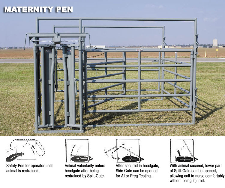 WW Maternity Pen