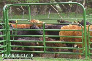 Powder River Classic 6 Bars ~ Bow Gates