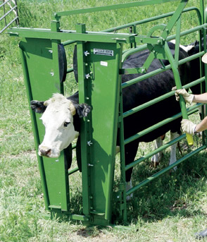 Powder River Cattle Chutes,Cattle Working Squeeze Chutes, Chute