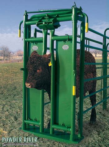 how to make a cattle chute