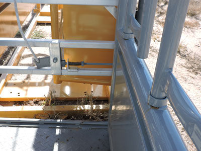 Renegade Cattle Squeeze Chute w/ 12 Panels